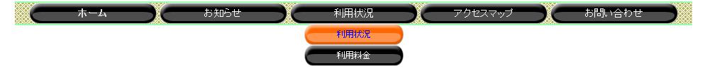 130205_ナビ1